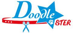 Doodle-STER SHOP