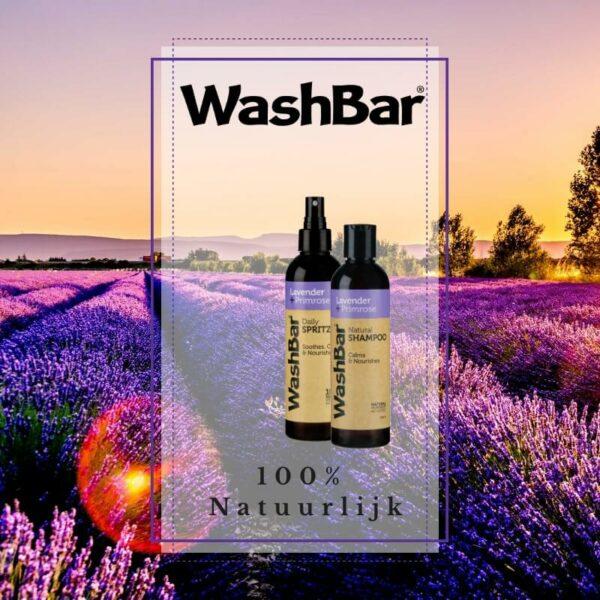 Lavendel & Teunisbloem Shampoo - WashBar